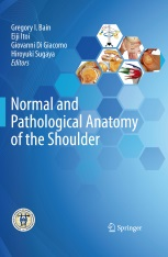 Normal and Pathological Anatomy of the Shoulder